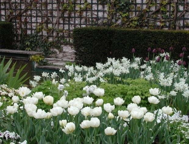 jardin-musée