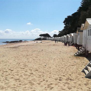 A Ilha de Noirmoutier: descoberta e patrimônio